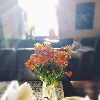 Сияющие цветы. :: Надежда Скотникова