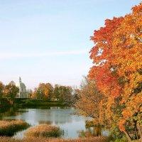 Осенние краски. :: VasiLina *