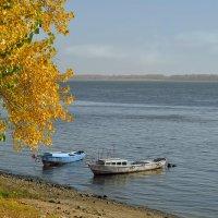 Волга осенью. :: Анатолий