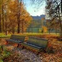 В парке осень :: Olcen Len