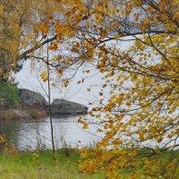Просто осень :: Светлана Петошина