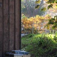 Осень, время снарядиться :: sv.kaschuk