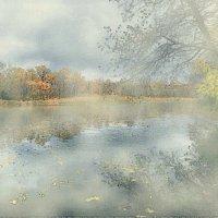 Туманный октябрь :: Nikolay Monahov