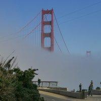 """Вблизи мост """"Золотые Ворота"""" в Сан Франциско выглядел так! :: Юрий Поляков"""