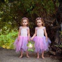 Маленькие феи :: Мария Хворостова