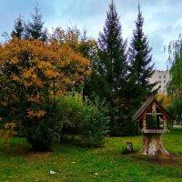 Осенний парк ... :: Татьяна Котельникова