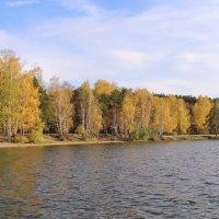 У озера :: Елена Викторова