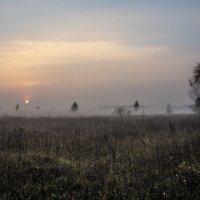 Утро перед хмурым осенним днём :: Александр Крупский