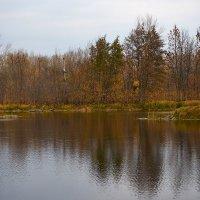 Осенние воды :: Олег Манаенков