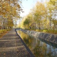 Парк имени Урицкого в октябре :: Наиля