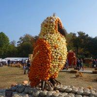 Крупнейший и самый известный в мире праздник тыквы ежегодно проходит в Людвигсбурге.... :: Galina Dzubina