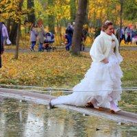 На семейную сторону :: Ирина Фирсова