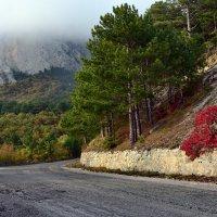 Осенняя прогулка по горной дороге :: Ольга Голубева