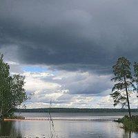 Перед дождём. :: Валентина Жукова