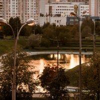 Парк в лучах заката :: Андрей Кузнецов