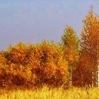 Золотые уборы :: Елена Макарова