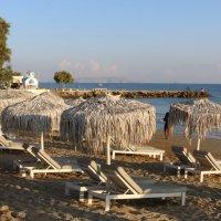Утро на пляже :: Ольга
