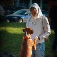 Я тебя люблю. :: Евгения Кирильченко