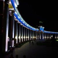 Прогулка в ночи :: Олеся Иванова