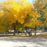 Золотая осень шагает по городу :: Галина
