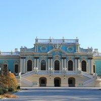 Мариинский дворец :: tina kulikowa