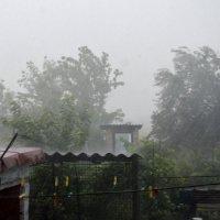 непогода :: Дарина Клименко