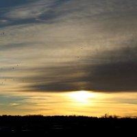 Осенний восход солнца. :: Фёкла