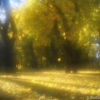 Осень в монокле :: Сергей