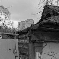 Осеннее настроение :: Валерий Михмель