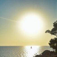 Солнечный кораблик... Sunny ship... :: Сергей Леонтьев