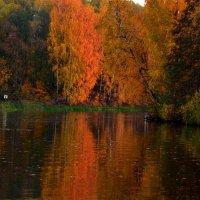 Осень, эта Осень, как пожар, озаряет меркнущий пейзаж... :: Ольга Русанова (olg-rusanowa2010)