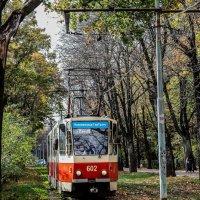 Калининградский трамвай :: Андрей Щукин