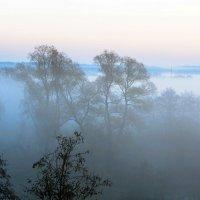 Осенние туманы (2) :: Сергей Ключарёв