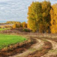 Осень в подмосковье :: Igor Yakovlev