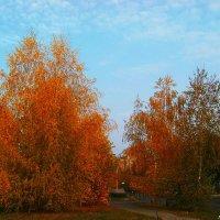Снова про осень золотую... :: Любовь К.
