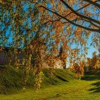 Осень в Великом Новгороде. :: Николай Кондаков