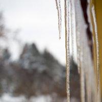 Зимняя капель :: Алексей Коннов