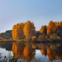 Загляделась роща золотая в зеркало знакомого пруда.... :: Olenka