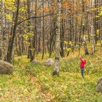 У берёз и сосен тихо бродит осень :: bajguz igor