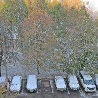 Первый  настоящий снег накрыл  Москву! :: Виталий Селиванов