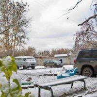 В утро после снегопада. :: Михаил Полыгалов