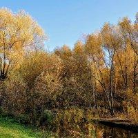 Река Городня...прощальные гастроли... :: Анатолий Колосов