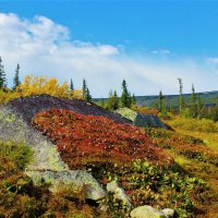 В горах сентябрь :: Сергей Чиняев