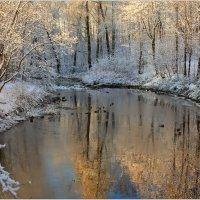 Первый снег :: Александр Алексеенко