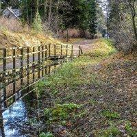 мостик вдоль ручейки :: Георгий