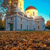 Осень в парке :: Виктор