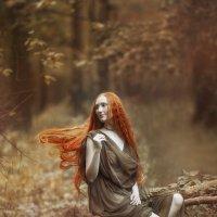 Кудесница леса :: Алёна Соболева