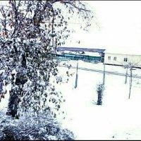 Первый снег :: Анастасия Игошина