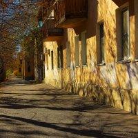 Самая первая улица города Волжского :: Аркадий Баринов
