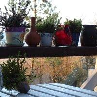 уютное кафе на берегу моря :: Sabina